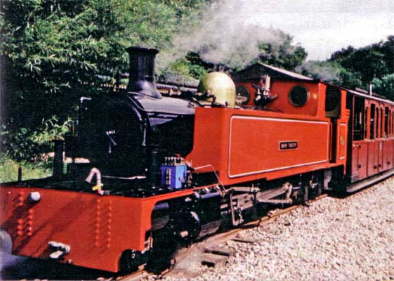 The original 'Mark Timothy', built in the style of the Irish narrow gauge class 5a County Donegal Joint Railways Committee locomotive. © Alan Richardson