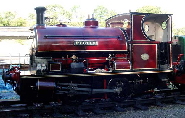 No.1579 of 1921. Named 'Pectin' this 0-4-0st is now based at the Yeovil Railway Centre. October 23 2005