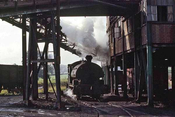 No.1935 of November 1937. This 0-4-0st, named 'Hornet' is seen at Bersham Colliery, Wrexham. 24 August 1979 © G.A.Cryer