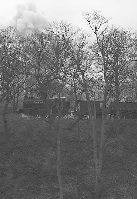 Gamma climbs away from East Tanfield with the coal train. March 26 1995